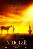 Miracolul (2015)