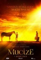 Miracolul (2015) – filme online