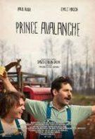 Prințul Texasului (2013)