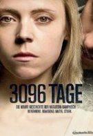 3096 de zile (2013)