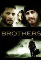 Fratele dispărut (2009)