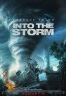 În mijlocul furtunii (2014)