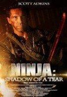 Ninja: Răzbunarea (2013)