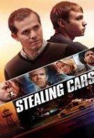Furând Mașini (2015) – filme online