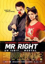Mr. Right. Un iubit…mortal (2015)