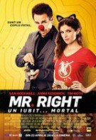Mr. Right. Un iubit…mortal (2015)