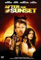After the Sunset – Hoț de diamante (2004)