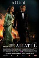 Allied (2016) – film online subtitrat