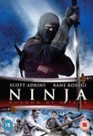 Ninja: Shadow of a Tear – Ninja: Răzbunarea (2013)