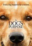A Dog's Purpose – Câinele, adevăratul meu prieten (2017)