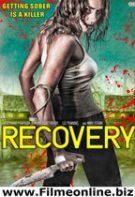Recovery – Recuperare (2019)