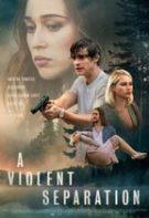 A Violent Separation – O despărțire violentă (2019)