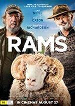 Rams – Berbecii (2020)